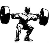 Isolation vs Complex Movements in Strength Training